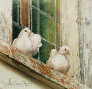 Wildlife & Bird Paintings by Susan Harrison-Tustain