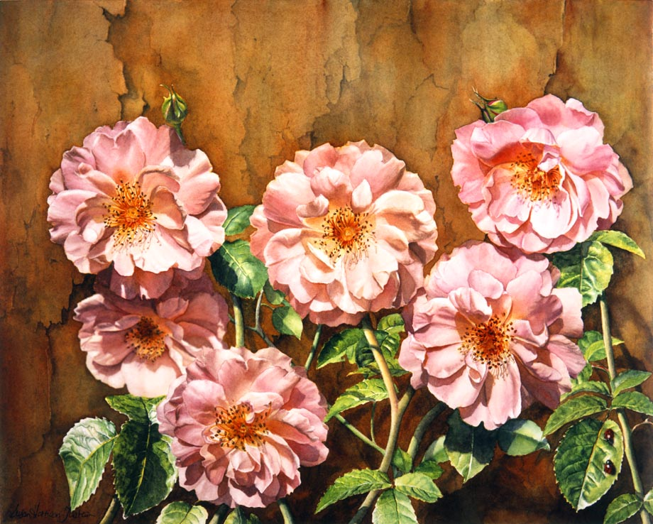 'Belle Story' - Floral Painting - Watercolor on Arches 300gsm hot pressed paper 12″ x 15″ 305 mm x 380 mm