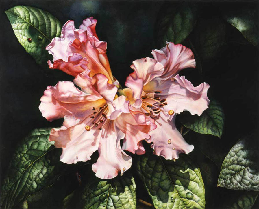 'Floral Dance' - Floral Painting - Watercolor on Arches 300gsm hot pressed paper 15 1/2″ x 20″ 390 mm x 510 mm