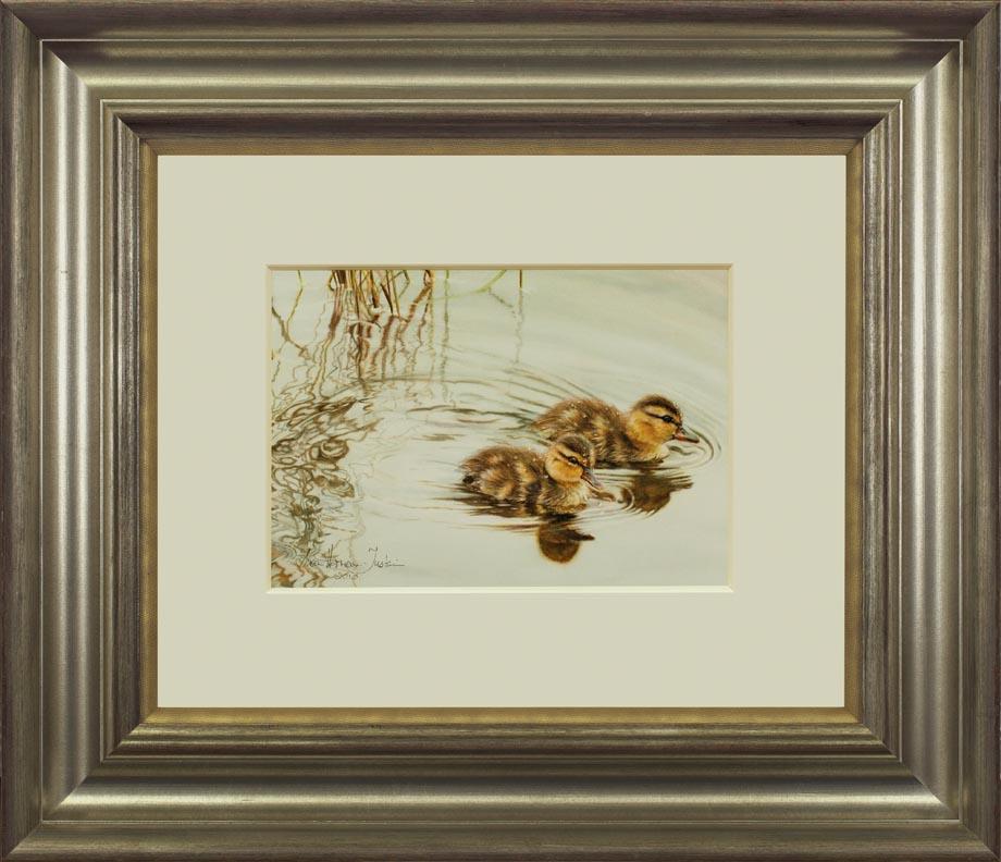 Gliding By framed