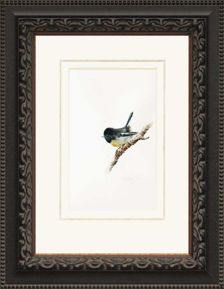 South Island Tomtit framed - Watercolor on Arches 300 gsm Hot Pressed paper Size: 16″ x 10″ 410 mm x 255 mm