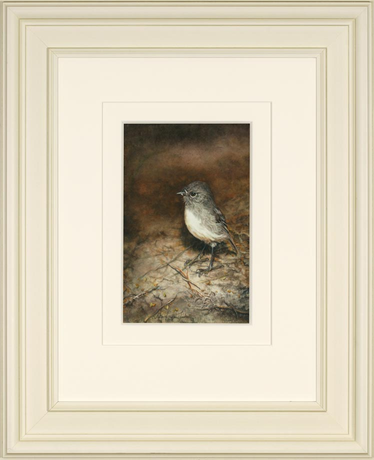 Stewart Island Robin framed - Watercolor on Arches 300 gsm Hot Pressed paper 12″ x 7 1/2″ 300 mm x 190 mm