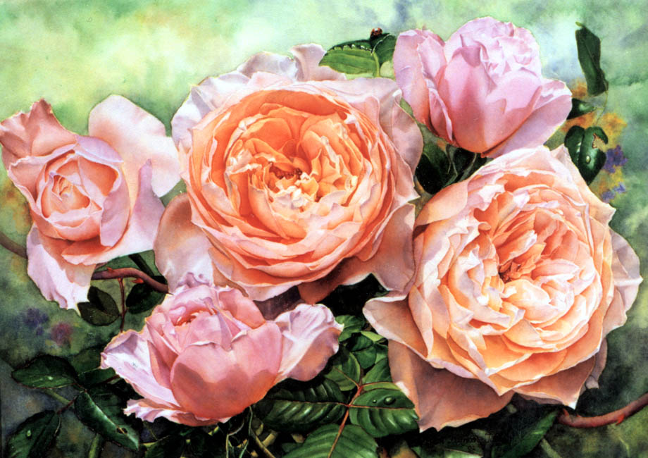 'Troilus' - Floral Painting - Watercolor on Arches 300gsm hot pressed paper 14 1/2″ x 20″ 370 mm x 510 mm
