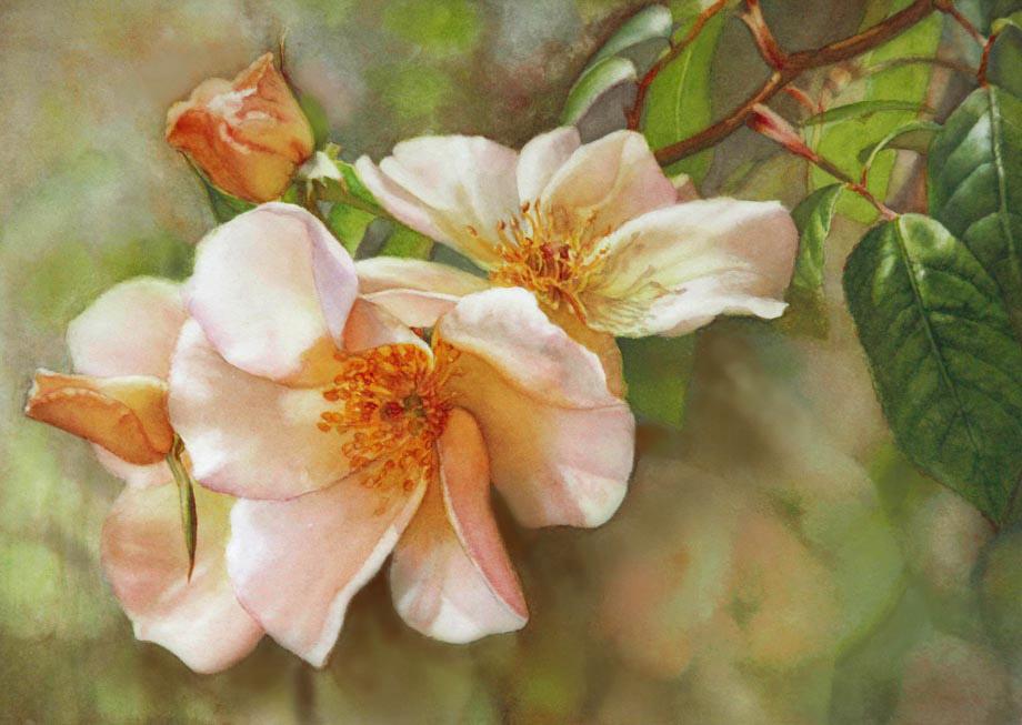 flowers art washes - photo #37