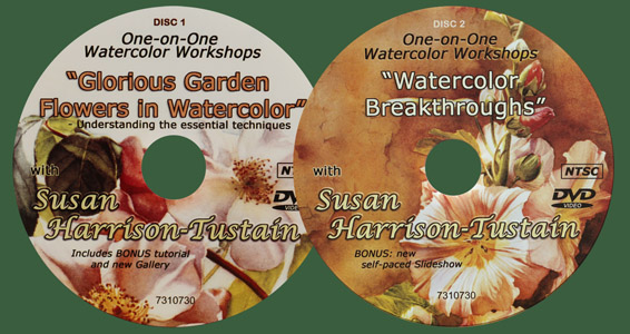 Watercolor painting DVDs and video downloads by Susan Harrison-Tustain