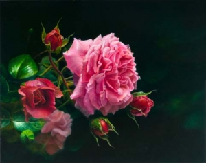Flower Rose Paintings by Susan Harrison-Tustain