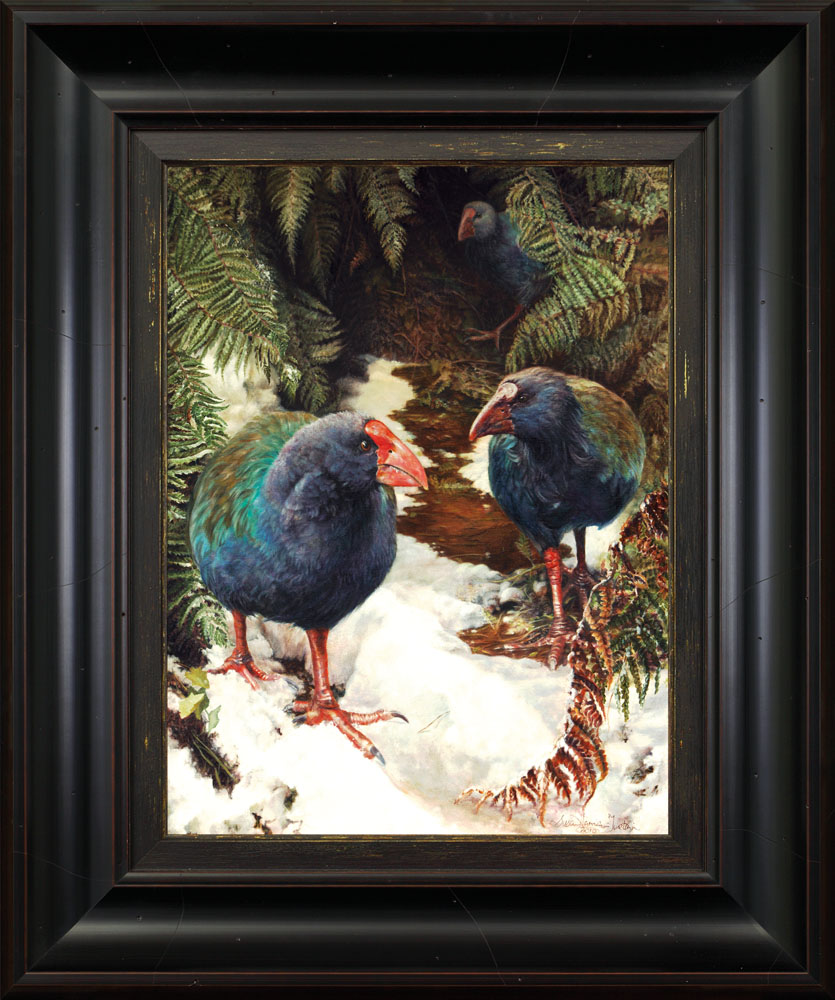 Takehe. Oil painting of New Zealand endangered bird. Tussock and wilderness