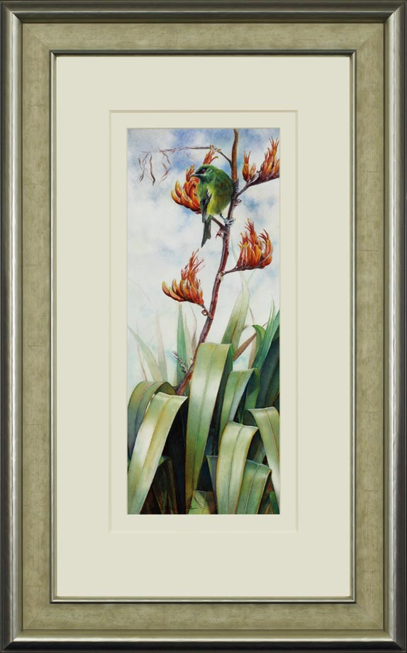 Bellbird framed - Watercolor on Arches 300 gsm Hot Pressed paper Size: 19″ x 7 1/2″