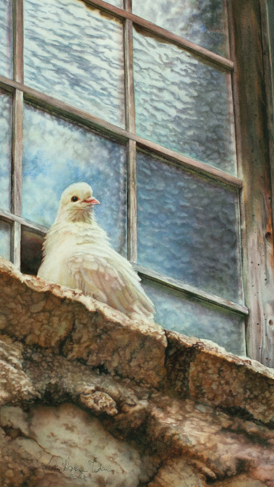 'Liberty' - Bird Paintings - Watercolor on Arches  300 gsm Hot Pressed paper Size: 19″ x 11″ 480 mm x 280 mm © Susan Harrison-Tustain