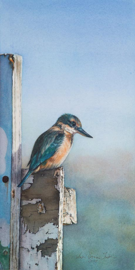 'The Sentinel' - Bird Paintings - Watercolor on Arches 300gsm hot pressed paper 8 1/4″ x 16 1/2″ 420 mm x 210 mm