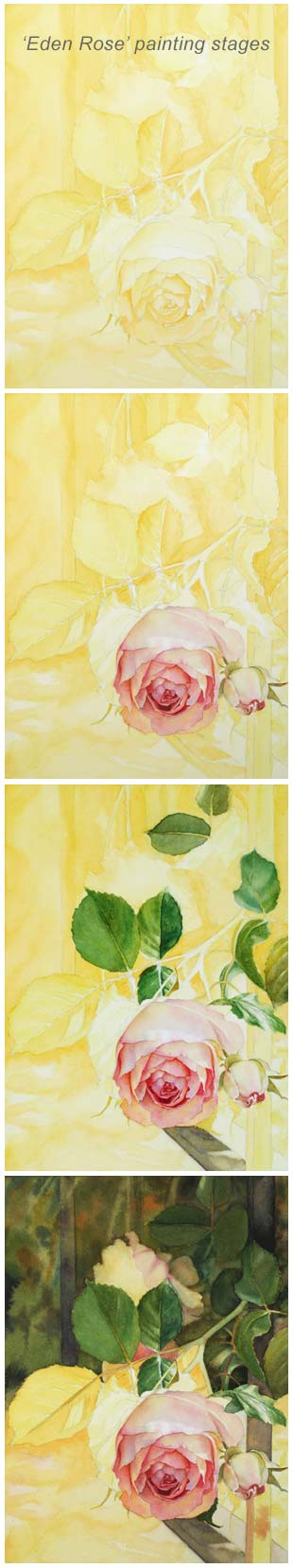 How to paint a Rose - Watercolor Art Lessons