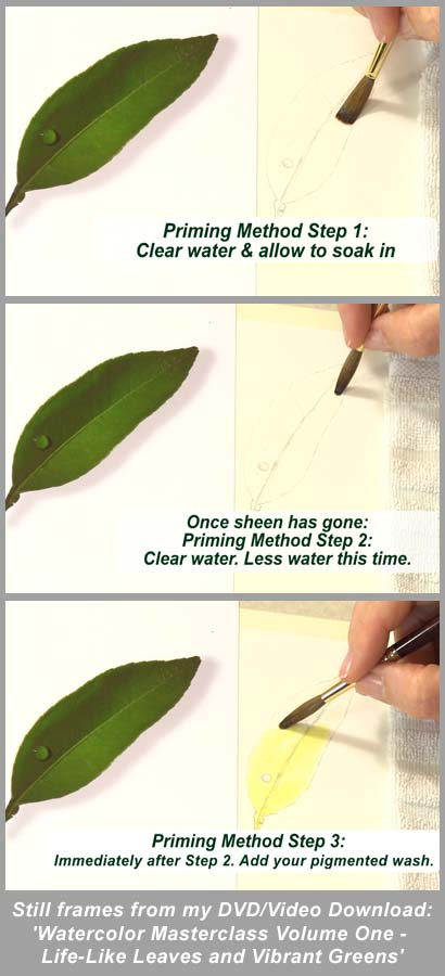 Susan Harrison-Tustain Priming Method Watercolor Art Lesson - 3 easy steps