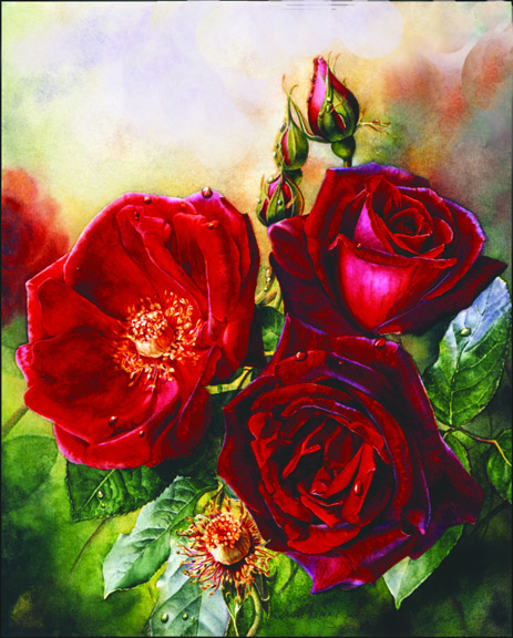 How to paint red roses